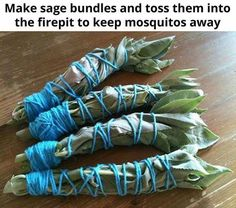 BUrn Sage bundles get ride of mosquitoes. Chef LeeZ #ThailandThaiCookingClassBangkok, Trip Advisor's #CookingSchool World review record holder. #1 #Thailand #Cooking #Class #Bangkok, Free gourmet #ThaiRecipes are available at http://chefleez.com #Thailand #CookingClass. Rv Hacks, Happy Campers, Rv Camping, Are You Happy, Campers