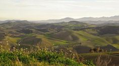 hills. Lucania