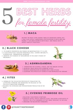 Herbs For Fertility, Boost Fertility Naturally, How To Increase Fertility, Pcos Fertility, Fertility Smoothie, Female Fertility, Natural Fertility, Getting Pregnant Tips, Get Pregnant Fast