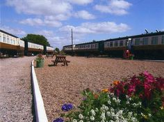 Camping carriages in cornwall