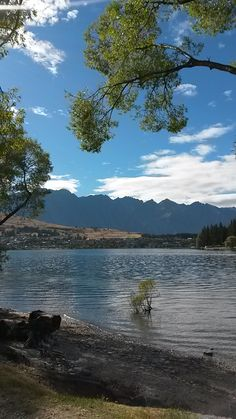 The view from our gallery in Queenstown, New Zealand. Come and visit us on Park Street New Zealand, Art Gallery, River, Park, Street, Outdoor, Outdoors, Art Museum, Parks