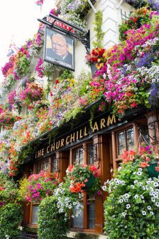 The Churchill Arms on Kensington Church Street on the corner with Campden Street, Notting Hill, London Beautiful Flowers, Beautiful Places, London Pubs, Flower Aesthetic, Oh The Places You'll Go, Love Photography, Wonders Of The World, Scenery, Around The Worlds