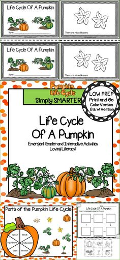 Are you looking for a LOW PREP reading activity for preschool, kindergarten, or first grade?  Then use these activities for guided reading, shared reading, independent reading, science, or homework.  Children can choose a colored version or a black and white version of a 9 page reader. The reader contains a patterned sentence on each page and informs children about the pumpkin's life cycle.  Children will reinforce what they read by completing the response page and by playing the board game.