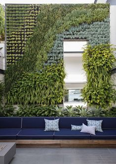 vertical garden plans benches throw pillows concrete pavers fire pit climbing vines door contemporary design of Fantastic Gardens to Get Fantastic Ideas for Vertical Garden Plans From