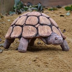 Clay Turtle, Ceramic Turtle, Ceramic Animals, Clay Animals, Ceramics Projects, Clay Projects, Types Of Turtles, Runner Ducks, Quill And Ink