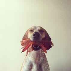 love bacon