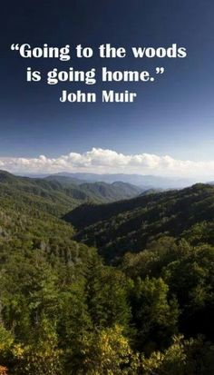 """MY TRUTH! """"Going to the woods is going home."""" John Muir – Image of Great Smoky Mountains National Park The Mountains Are Calling, Great Smoky Mountains, Snowy Mountains, Hiking Quotes, Travel Quotes, Feral Heart, John Muir Quotes, Smoky Mountain National Park, Nature Quotes"""
