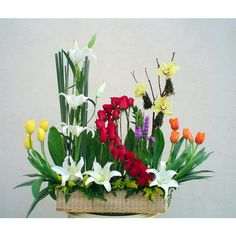arreglos de flores exoticas grandes - Pesquisa Google