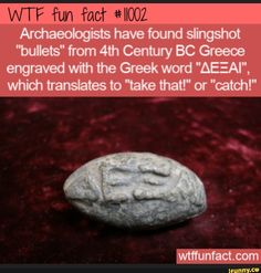 Wtf Fun Facts, Funny Facts, Stupid Funny Memes, Wtf Funny, Funny As Hell, Greek Words, The More You Know, Life Memes, History Facts