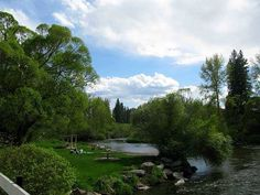 Pine River Park