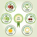 Icon set for Organic Fruit vector template. Organic & Ecologically clean food badges. Product package labeling template for organic standard, farm grown, premium quality products. Layered, editable