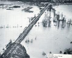 1964 flood from Clackamas River Bridge, Oregon State Archives. Oregon City, Oregon Washington, Vintage Pictures, Portland, Past, Bridge, River, History, Outdoor