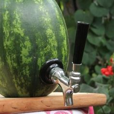 Check out the Watermelon Tap Kit, taking your average everyday watermelon, and turning it into the perfect summer drink dispenser.  Imagine the fun when you show up to your next summer shin-dig, or tailgate party with your fun, and functional, watermelon keg. Simply hollow out the perfect watermelon, install the tap, and voila! your watermelon is the center of attention.