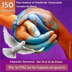 """#150ROSARIOS 🌸🌸 Para Acelerar el Triunfo del Inmaculado ❤️ de María🌸🌸 INTENCIÓN de la semana del 16 al 22 de Enero 🌎""""POR LA PAZ EN LOS LUGARES EN GUERRA""""🌎  Más detalles sobre la campaña de oración #150Rosarios http://forosdelavirgen.org/109971/150-rosarios/"""