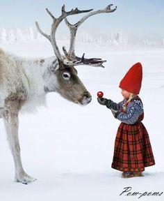 Spirit of Xmas - Santa is coming!!! #xmas #snow #Santa