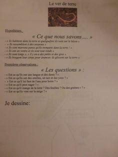 Traces écrites expériences ver de terre LA CLASSE DE PEPE                                                                                                                                                     Plus Ms Gs, Explorer, Blog, Seeds, Plant, Earthworms, Learn French, Index Cards