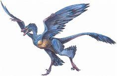 Microraptor gui - feathered dinosaur from Lianoning, China