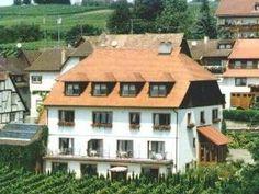 88709 Hagnau, #bodensee Bodenseeurlaub in Hagnau nahe Meersburg, Blick auf Reben, Bodensee, Schweizer Alpen - #urlaub