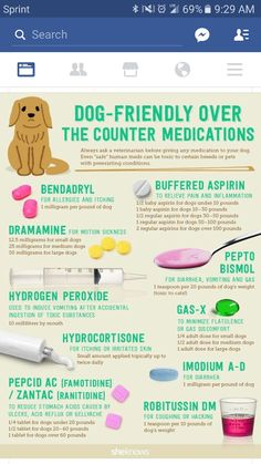 OTC dog medication