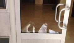 Konya Haber Sitesi: Konyada feci olay! 10 yaşındaki çocuk ağır yaralandı