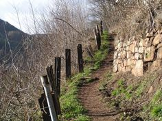 have_a_look: Trail in Lambrecht