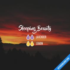 Sleeping Beauty - Essential Oil Diffuser Blend