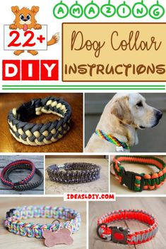 Amazing DIY Paracord Dog Collar Instructions Paracord Hundehalsband Anweisungen Bild The post erstaunliche DIY Paracord Hundehalsband Anweisungen & Doggy appeared first on DIY . Paracord Diy, Paracord Dog Leash, Paracord Tutorial, Paracord Collar, How To Braid Paracord, Paracord Bracelets, Diy Dog Collar, Dog Collars, Diy Dog Toys