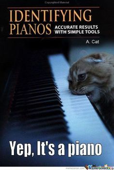 Yep, It's a piano. Piano Memes, Piano Funny, Music Memes, Music Sing, Music Love, Music Is Life, Roland Piano, Best Piano, Baby Grand Pianos