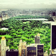 Escape the concrete jungle for #CentralPark. #NatureWalk