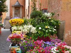 Flores en el Trastevere