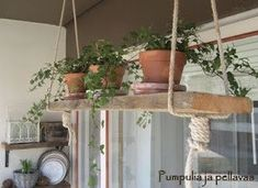 Lovely way to add an herb garden to a kitchen - a little rustic for my taste, bu. Lovely way to ad Herb Garden Pallet, Veg Garden, Pallets Garden, Balcony Garden, Balcony Ideas, River Rock Landscaping, Landscaping With Rocks, Wood Plank Shelves, Growing Herbs