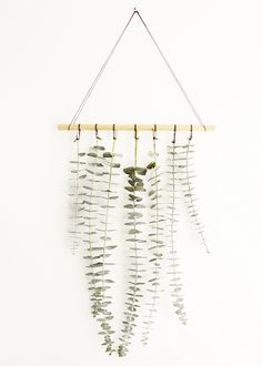 DIY hanging eucalyptus | On the sweet things