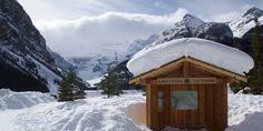 Lake Louise Canada, Outdoor, Canadian Rockies, Outdoors, Outdoor Living, Garden