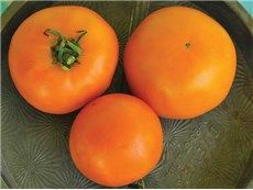 A bounty of options exists for home gardeners when they choose the incredible variety of heirloom tomato seeds for their gardens Types Of Tomatoes, Growing Tomatoes, Growing Vegetables, Heirloom Tomato Seeds, Heirloom Tomatoes, Cherry Tomatoes, Determinate Tomatoes, Canning Tomatoes, Peach