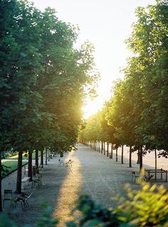 París y el atardecer en el Jardin des Tuileries