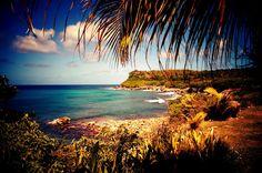 PETITS PARADIS: La Désirade, Guadeloupe