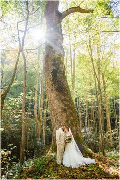 Woodland wedding at Spence Cabin in Elkmont in the Great Smoky Mountains National Park