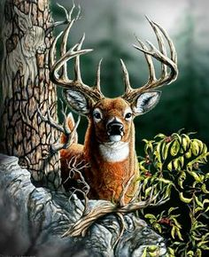 Steve Michael Gardner is one of the great hidden image nature artists, along with Bev Doolittle, whose paintings and computer generated artwork shines brightly in the universe of incredible genius. Hidden Art, Hidden Images, Hidden Pictures, Hidden Pics, Hidden Optical Illusions, Bev Doolittle, Deer Pictures, Deer Family, Deer Art