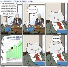 Business Cat - Propuesta
