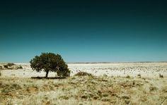 La perizia annuncia: «2064, fine del mondo». La Campania Felix sarà un deserto