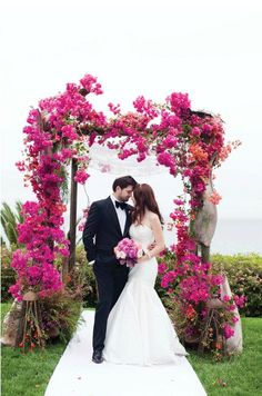 @elinden2 ok so there is a way to do bougainvillea sprays and not have them wilt!  this is gorgeous!!!