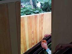 Cet tembok Motif kayu ggobok jateng - YouTube The Originals, Modern, Youtube, Painting, Cat, Pintura, Trendy Tree, Painting Art, Cat Breeds