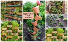 Not all of the plants in your garden or yard are required to be on the ground. Check out these creative vertical garden ideas and get inspired to add a few.