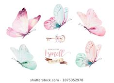 Watercolor colorful butterflies, isolated on white background. blue, yellow, pink and red butterfly illustration. - Buy this stock illustration and explore similar illustrations at Adobe Stock Watercolor Butterfly Tattoo, Butterfly Drawing, Butterfly Painting, Watercolor Flowers, Watercolor Art, Illustration Papillon, Butterfly Illustration, Watercolor Illustration, Butterfly Images
