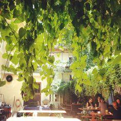 Restaurant Bar, Vienna, Restaurants, Allotment, Vacation Places, Waiting, Croatia, Things To Do, Destinations