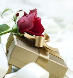 Romantic Birthday Gifts HD Wallpapers For Girlfriend - Free Desktop Wallpapers, Wallpapers for FREE in High Quality Resolutions Birthday Wishes For Him, Birthday Gifts, Birthday Bash, Birthday Images Hd, Raindrops And Roses, Romantic Gifts For Her, Cellphone Wallpaper, Happy Anniversary, Birthday