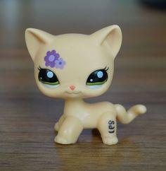 2'' Beige Cat Purple flower Kids Toys Green Eyes Littlest Pet Shop LPS 1962 | Toys & Hobbies, Preschool Toys & Pretend Play, Littlest Pet Shop | eBay!
