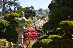 Japanese Tea Garden The Entire Universe, Golden Gate Park, Garden Sculpture, San Francisco, Mindfulness, Japanese, Tea, City, Awesome