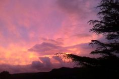 Pink sky // 28.08.14