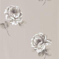 Sanderson 216279 Rosa Wallpaper